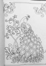 5733 best images about Adult Coloring Pages on Pinterest ...