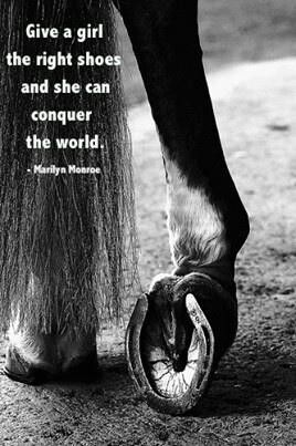 """""""Give a girl the right shoes and she can conquer the world,"""" Marilyn Monroe. Shoes or horseshoes!"""