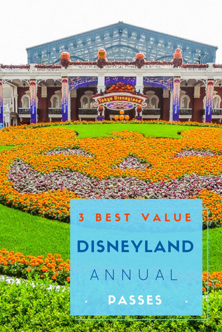 Disney is the Happiest Place on Earth, if you believe the Disney site. It is true that family memories that last a lifetime are create at Disney Parks. Disney Annual Passes can be a great way to create your lifetime family memories. Do you know which ones are the best value? via @NiceRightNow