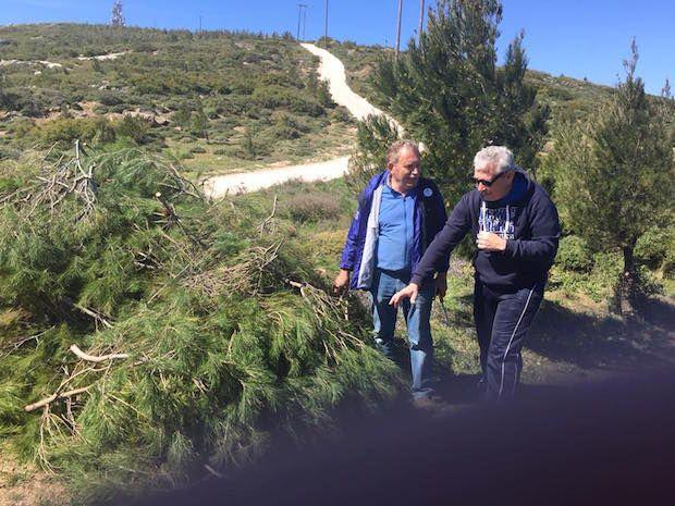 Στο Πάνειο Όρος του Δήμου Σαρωνικού για τη δράση «Let's do it Greece 2017» σήμερα ο Αντιπεριφερειάρχης Ανατολικής Αττικής