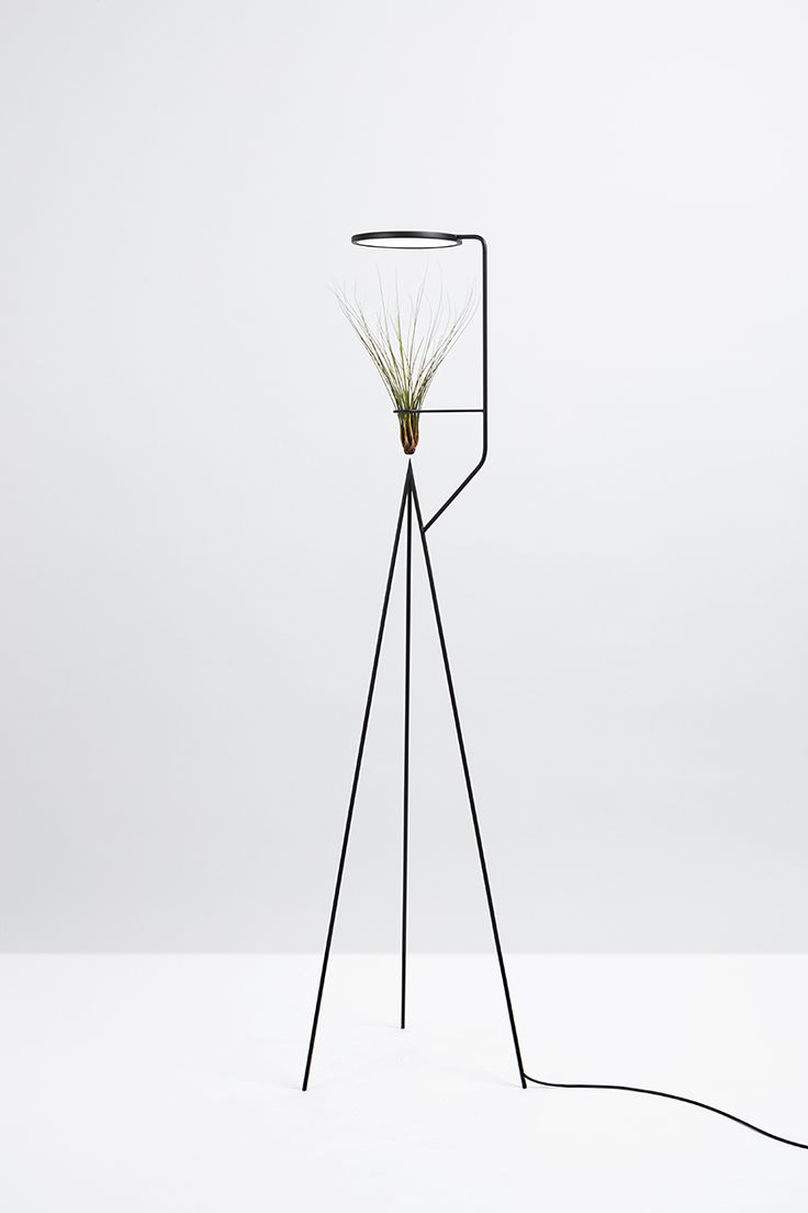Wire cone chairs moon lamp - Goula Figuera Viride Plant Plus Lamp Designboom