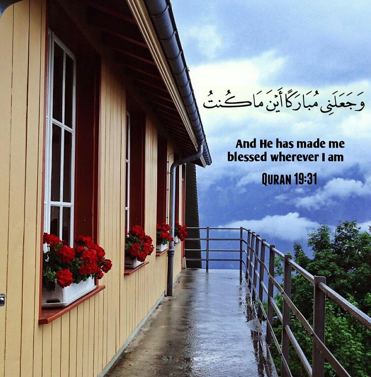 "muslimdailyreminders: ""Quran surah maryum verse 31 "" www.islamic-quotes.com"