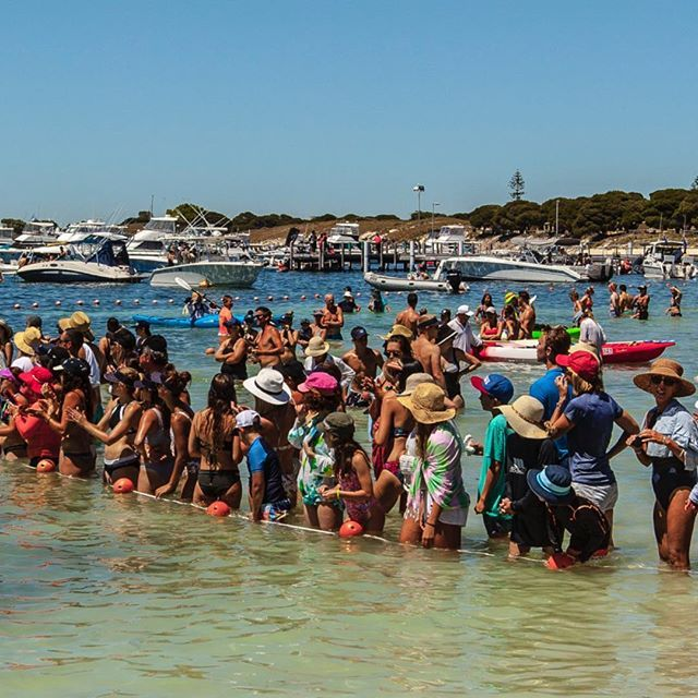 2/3 - Beach party on Rottnest Island! Grab your beach towels and head on down! #ExperienceKarma #KarmaResorts #KarmaRottnest #KarmaResortsRottnestChannelSwim #RottoSwim #Perth #WesternAustralia