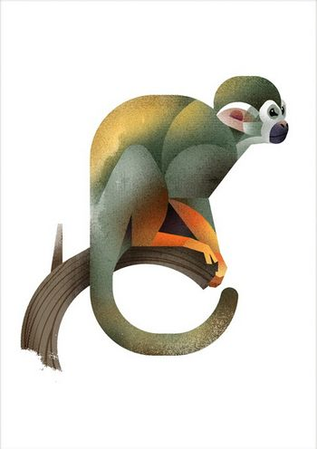 Squirrel Monkey by Dieter Braun #illustration #animal #texture geometric #monkey #print
