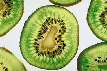 Close Up Of Kiwi Fruit Image In Still Life Photography