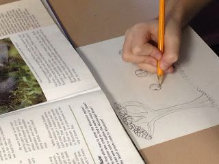 Fourth Grade Studio: Learning, Thinking, Creating: State History Illustrated Timeline Project