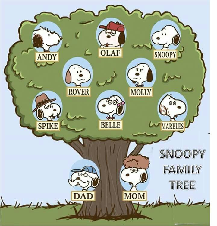 Peanuts Snoopy Family Tree