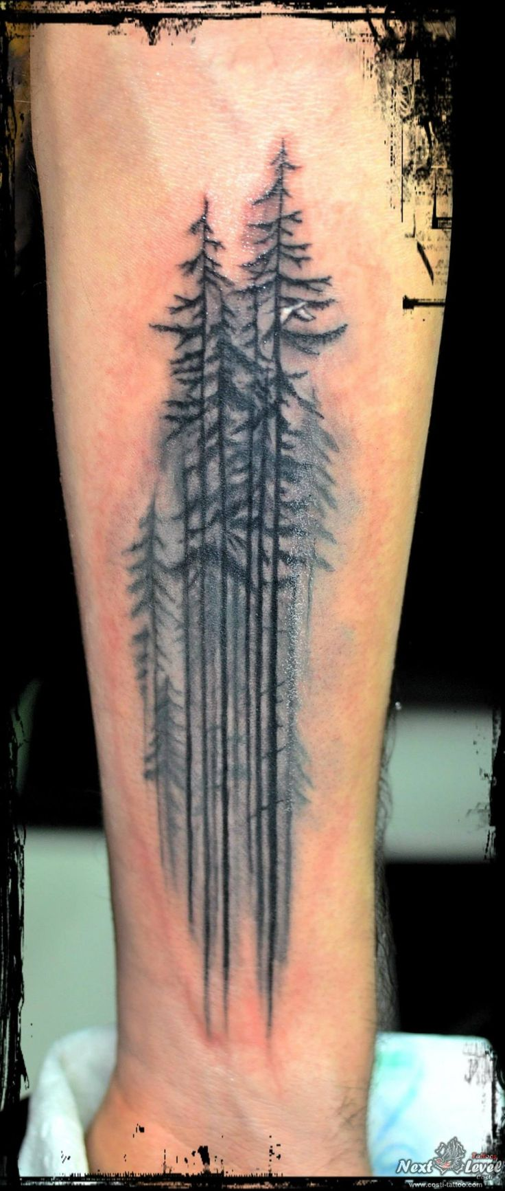 this picture on skin  http://pinterest.com/pin/452541462526593444/  forrest tattoo, trees tattoo