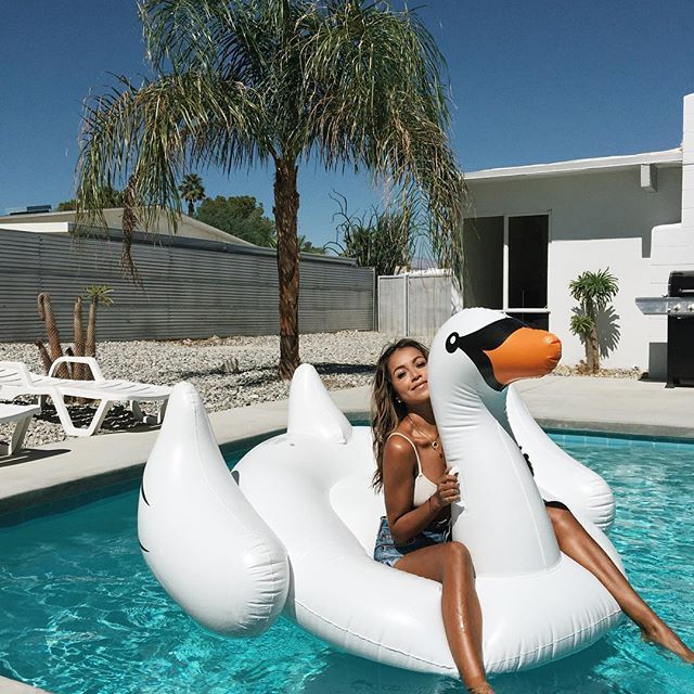 Swan life. ❤️