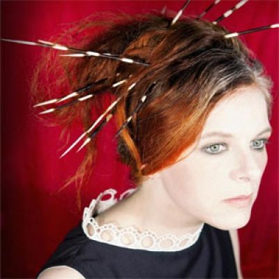 Check out the biography and preview of the Brilliant Neko Case who will be performing at Concorde 2 on the 11th of December 2013. Follow the link here: http://www.brightonnoise.co.uk/listing/?p=66136
