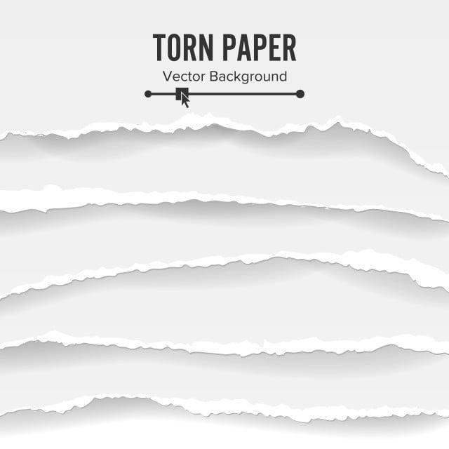 ممزقة ورقة مجموعة ناقلات فارغة من الورق الممزق الأبيض ممزق الحواف مع الظل الورق تمزقها مزق Png والمتجهات للتحميل مجانا Torn Paper Free Paper Texture Torn
