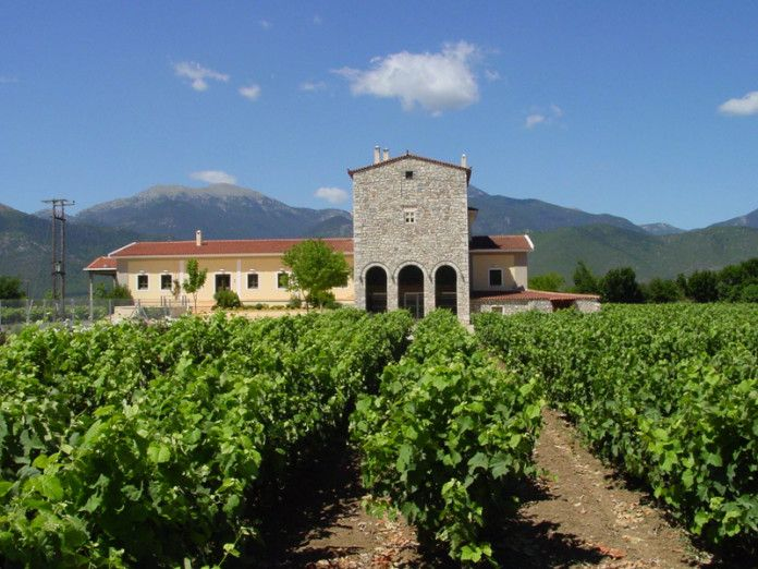 Wine Tours in the Historic Wine Region of Peloponnese, Greece #nemea #tastegreekwine #winehistory http://greece.greekreporter.com/2016/05/26/wine-tours-in-the-historic-wine-region-of-peloponnese-greece/