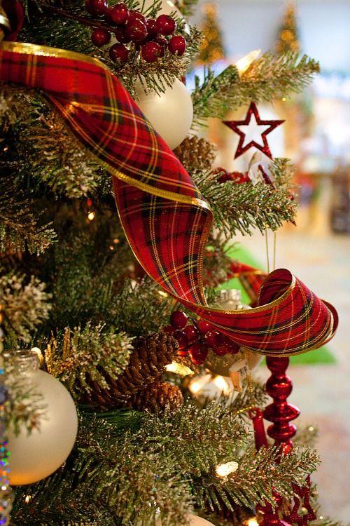 **Christmas Blessings**: