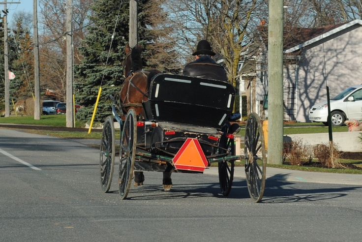 Amish country in Ontario.