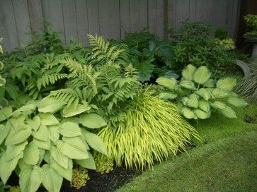 Shady woodland gardens --Their success depends largely upon combining interesting foliage textures and playing one shade of green off another. This design beautifully partners Japanese forest grass (Hakonechloa macra 'Aureola') with assorted hostas, astilbes and ferns. The result is a soothing medley that will thrive in partial shade, in average to moist soil, in zones 5 to 8.