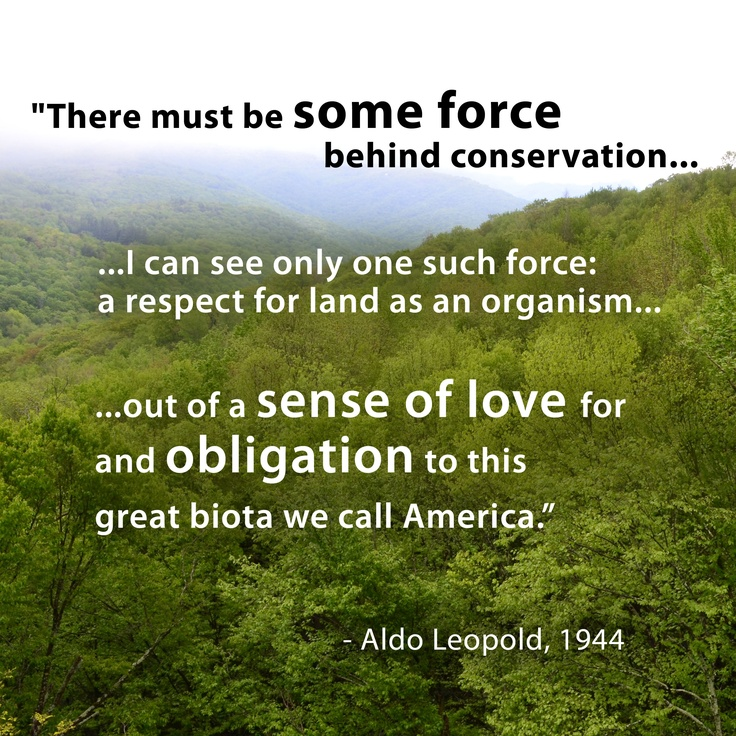 Famous Wildlife Conservation Quotes: 58 Best ALDO LEOPOLD, HERO Images On Pinterest