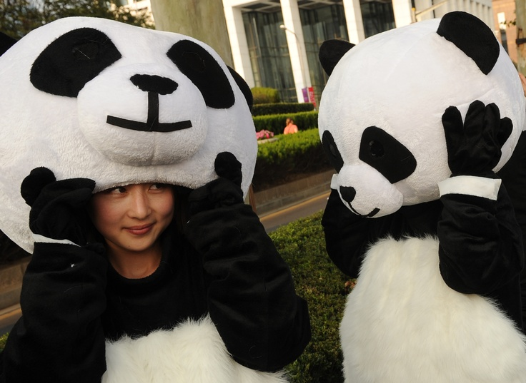 17 Best Images About Mascot Costumes On Pinterest Suits