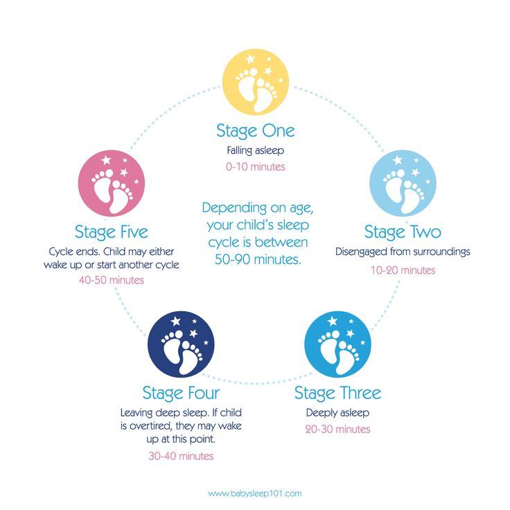 Baby-Sleep-101-Sleep-Cycle