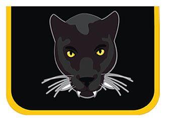 Пенал без наполнения Belmil Panther 335-72/514 - заказать по привлекательной цене в интернет-магазине Канцеляркин