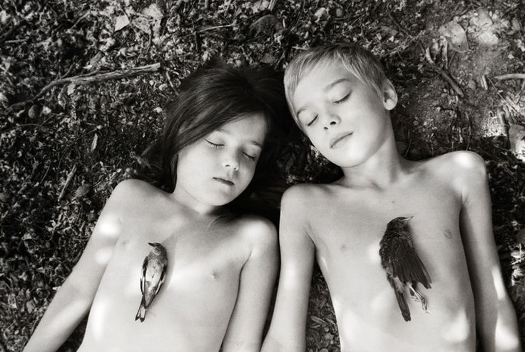Sleeping Beasts by Dara Scully