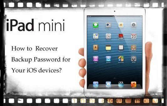 iPad mini backup password forgot? Use iPad backup passsword recovery to recover the password.