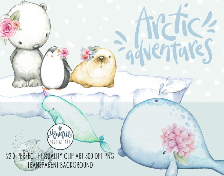 Arctic Animals Clipart,Watercolor whale,walrus, seal, narwhal,polar bear,penguin Clipart,Nursery animals Clipart,Baby Shower,Planner Clipart