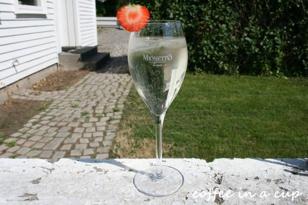 cocktail hour: wine spritzer