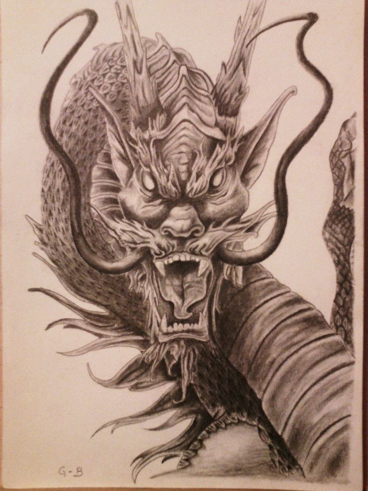 Pin by davide buttolo on tatuaggi pinterest dragons - Dragon images gratuites ...