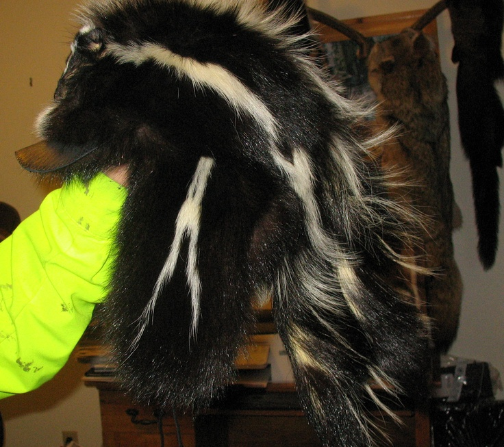 Crockett Coonskin Caps: The Finest Quality Fur Hats ...