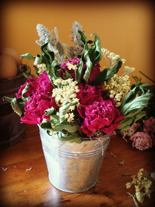 How to Dry Flowers and Make an Arrangement | The Happy Housewife