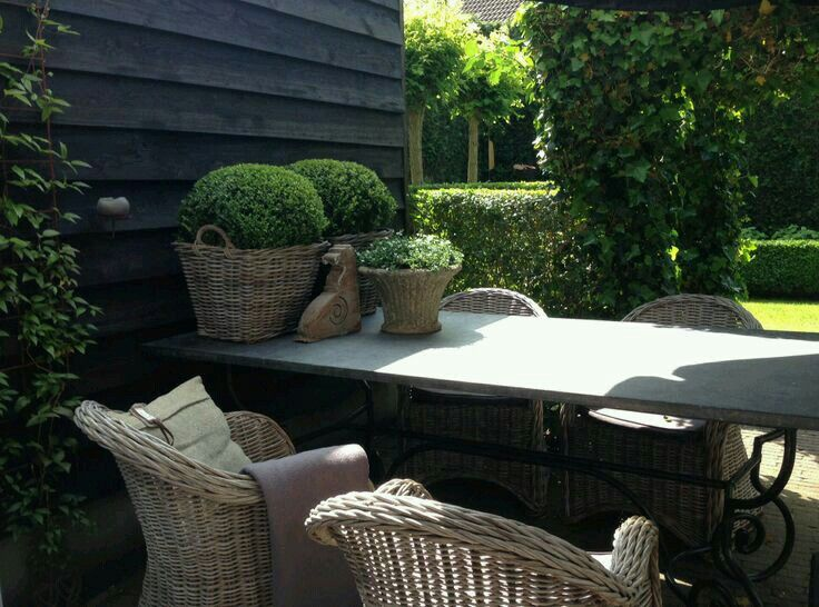 Buxus is altijd een goed idee, of het nu in de tuin is of in een pot. Het blijft steeds mooi...