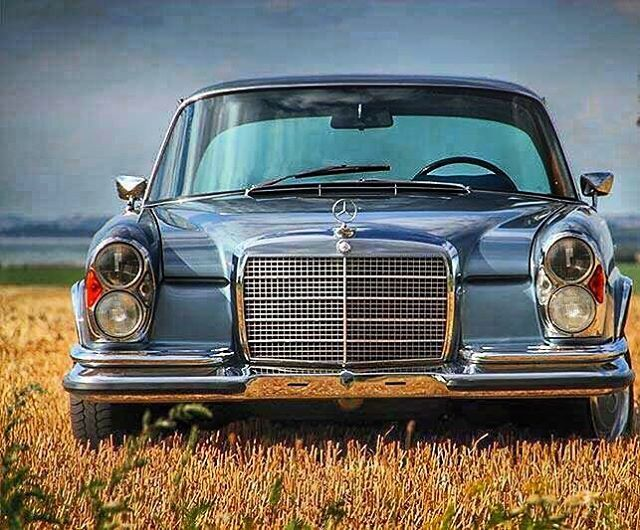 1756 best mercedes images on pinterest mercedes benz for Mercedes benz vintage cars