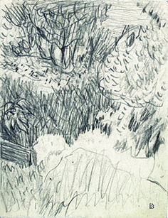 bonnard drawings - Google Search