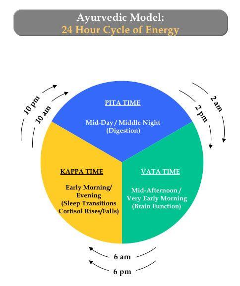 Ayurvedic Diet - 24h Cycle of Energy - Learn more: http://www.foodpyramid.com/diets/ayurvedic-diet/ #ayurveda