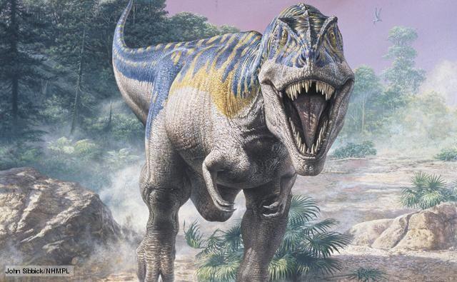 Male Tyrant King (T.Rex) vs 2 male Carcharodontosaurus | Dinosaur ...