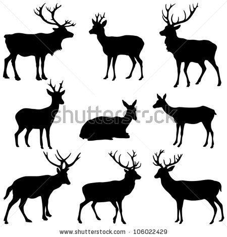 Deer collection - vector silhouette by Hein Nouwens, via Shutterstock