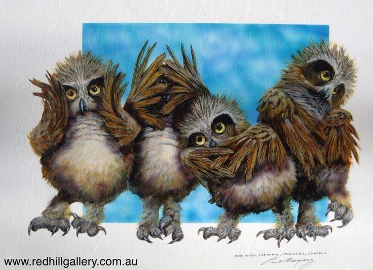 Paul Margocsy 'Hear No, See No, Speak No, Do No Evil, Aus Boobook Owlets' 46x36cm. 61 Musgrave Road, Red Hill Brisbane, QLD, Australia. art@redhillgallery.com.au