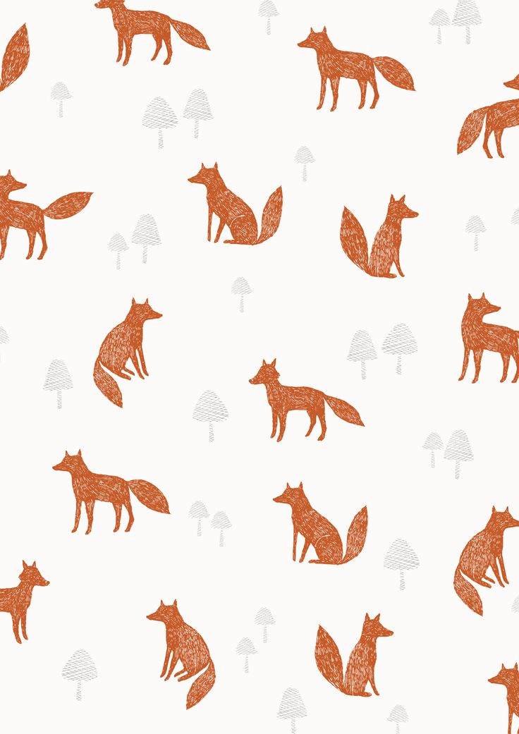 Fox pattern | Dashwood studio