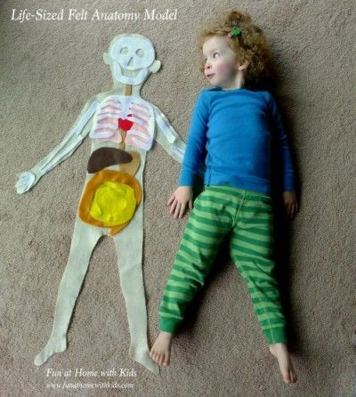 Asia from Fun at Home with Kids is sharing this amazing life size anatomy made from felt (along with the help of her adorable daughter). Stop by to read all about it!