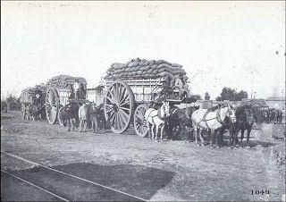 El transporte de los productos desde las chacras a las estaciones o a los galpones de acopiadores se efectuaban por medio de carros de 4 ruedas, chatas, carretas, la tracción de los mismos era realizada por caballos...