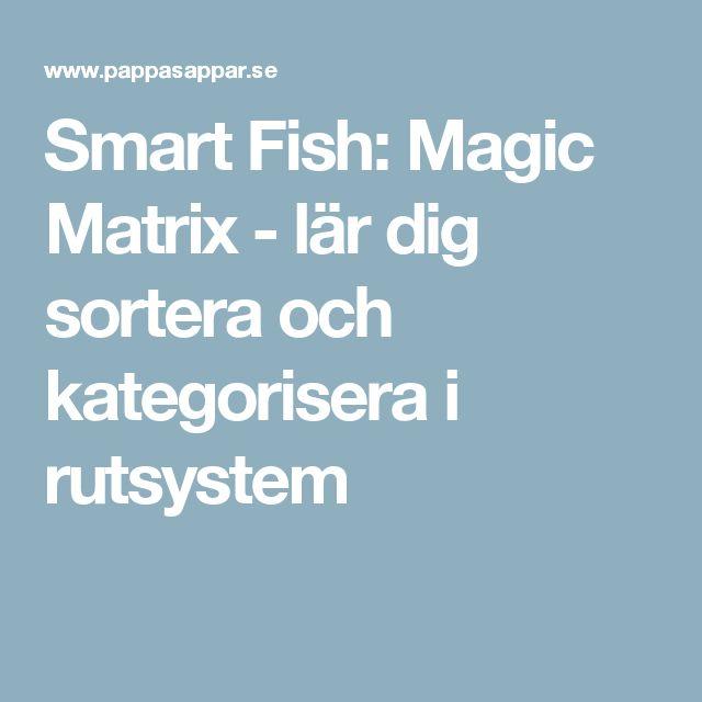 Smart Fish: Magic Matrix - lär dig sortera och kategorisera i rutsystem