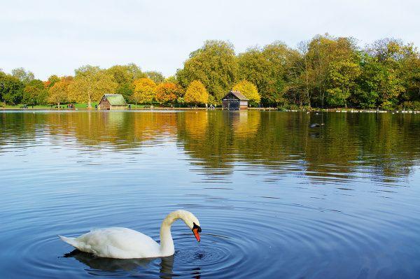 Hyde Park, Londýn, Anglicko