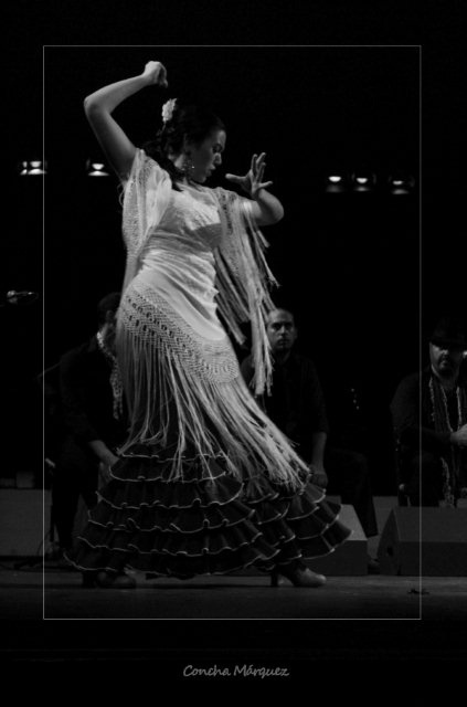 Flamenco by Concha MG, via Flickr.