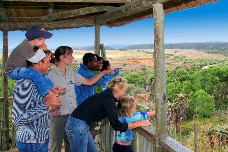 View how these parents survived an amazing #Safari vacation with thier kids. http://www.stuff.co.nz/travel/destinations/africa/78298689/family-holiday-in-africa-how-to-survive-a-safari-with-kids