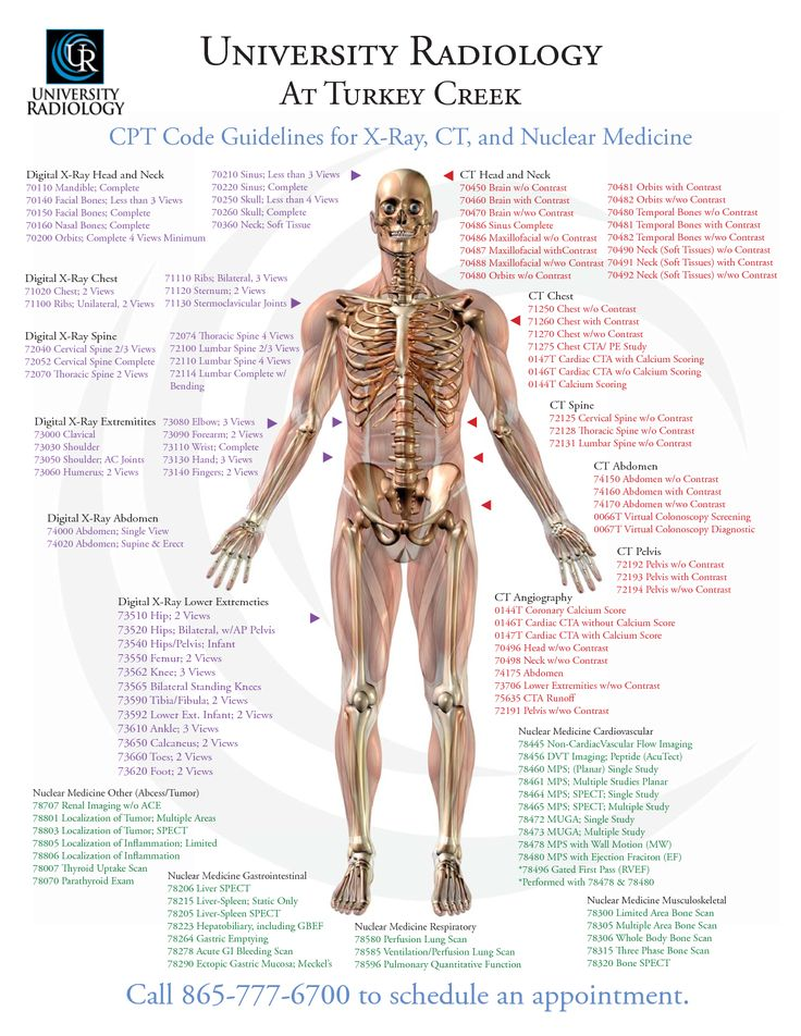 University Radiology At Turkey Creek CPT Code Guidelines