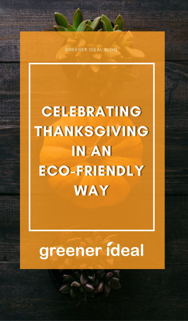 The holidays are a wonderful time of year to celebrate traditions with family and friends, but some of the practices are not especially eco-friendly. You can, however, reduce the carbon footprint of this holiday by creating some of your own traditions that are good for the planet and help the larger community striving to create a sustainable planet.
