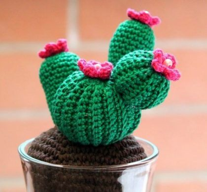 Amigurumi Cactus Nopal : 565 best images about cactus uncinetto on Pinterest Free ...