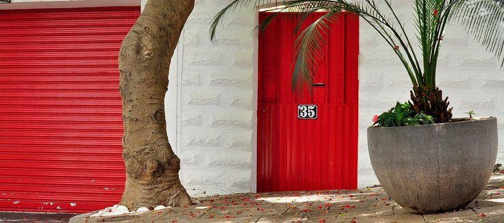 Unsere Hausschilder sind farbenkräftig und ausdrucksstark.