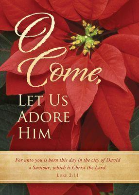 Worship Jesus This Christmas.