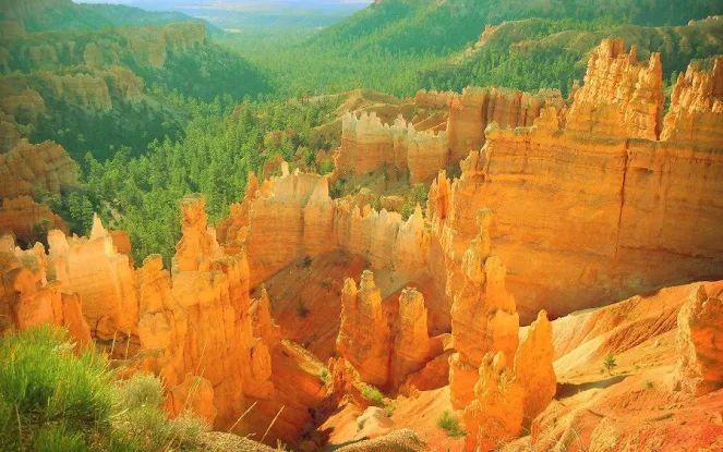 Bryce Canyon National Park / Utah